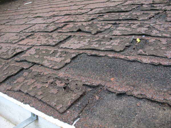 damaged roof shingles in bucks county